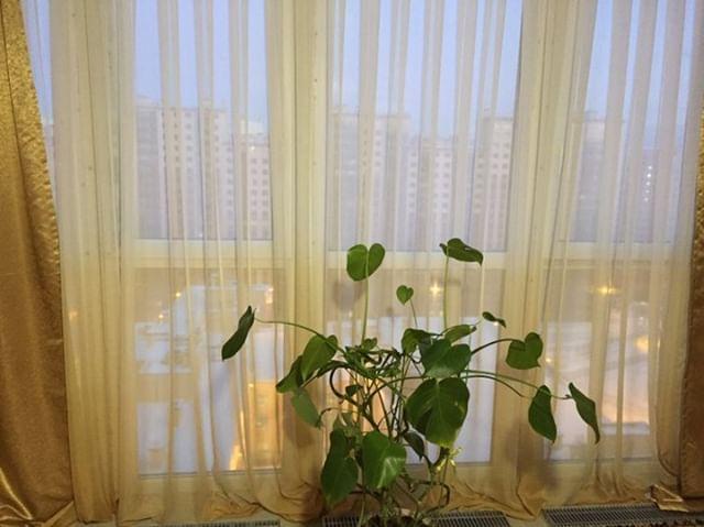 4-к квартира в Кудрово, микрорайон Новый Оккервиль, ул. Областная, 1